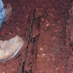 broken sewer line pipe